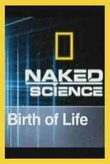 Дело о планете Земля: Рождение жизни