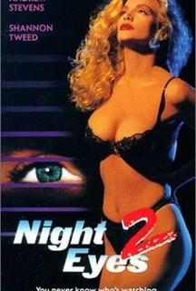 Ночное наблюдение 2